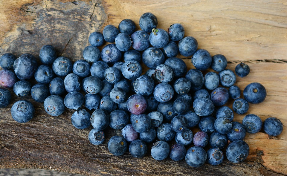 Blueberries - Natures Blues  Gift