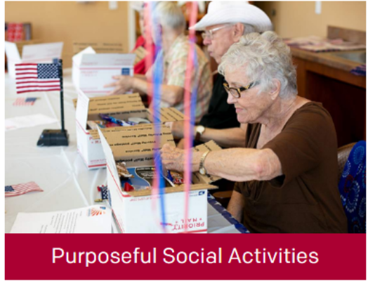 Purposeful Social Activities
